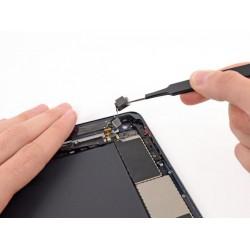 Замена камеры основная iPad mini